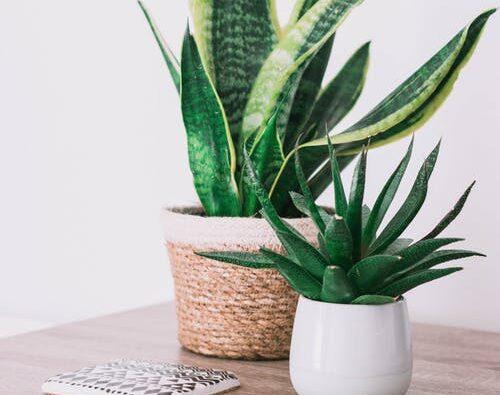Hitta ny inspiration till ditt hem